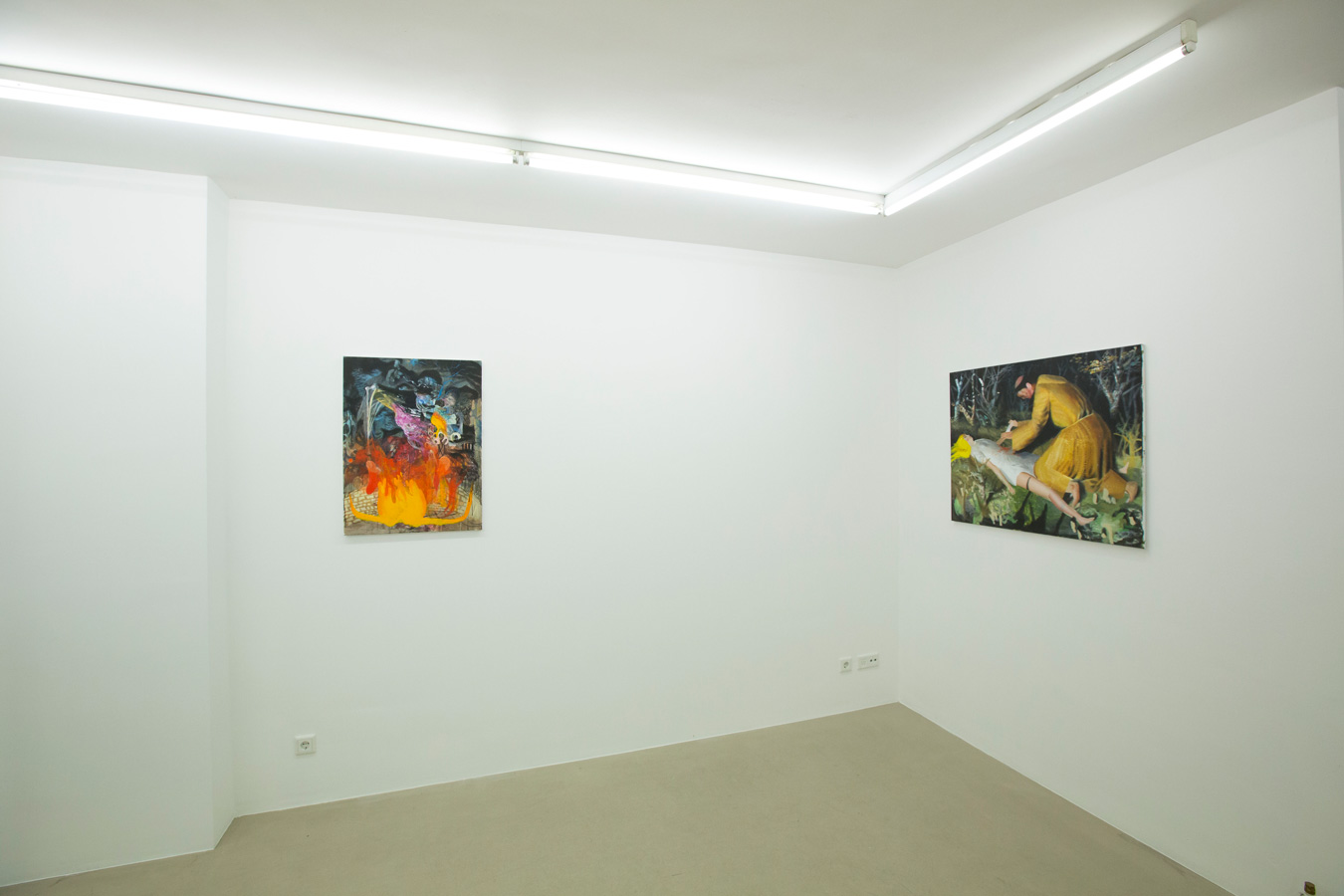 Ornis-A.-Gallery---exhibition-view-Julius-Hofmann---stony-fields-1
