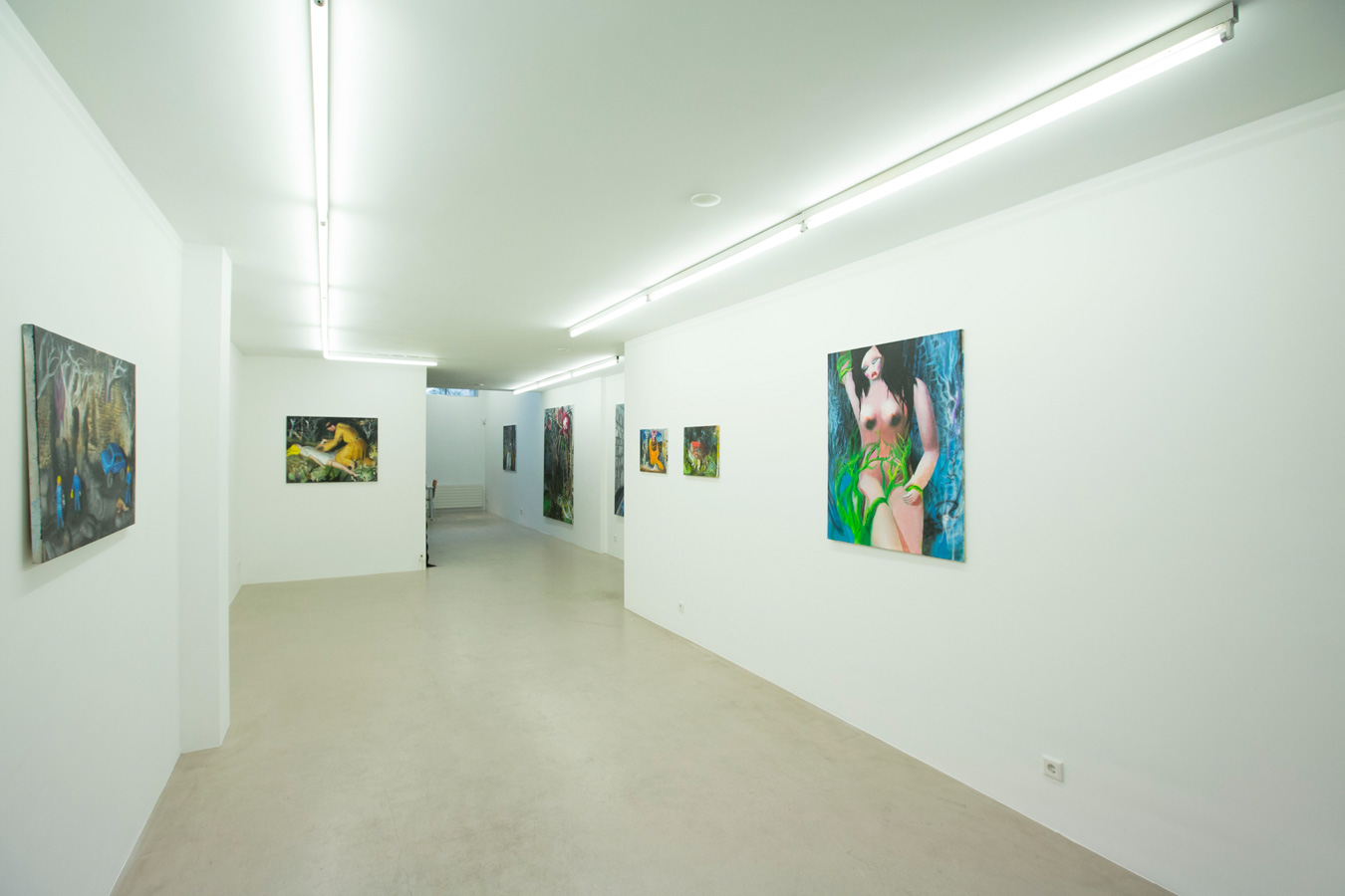 Ornis-A.-Gallery---exhibition-view-Julius-Hofmann---stony-fields-2