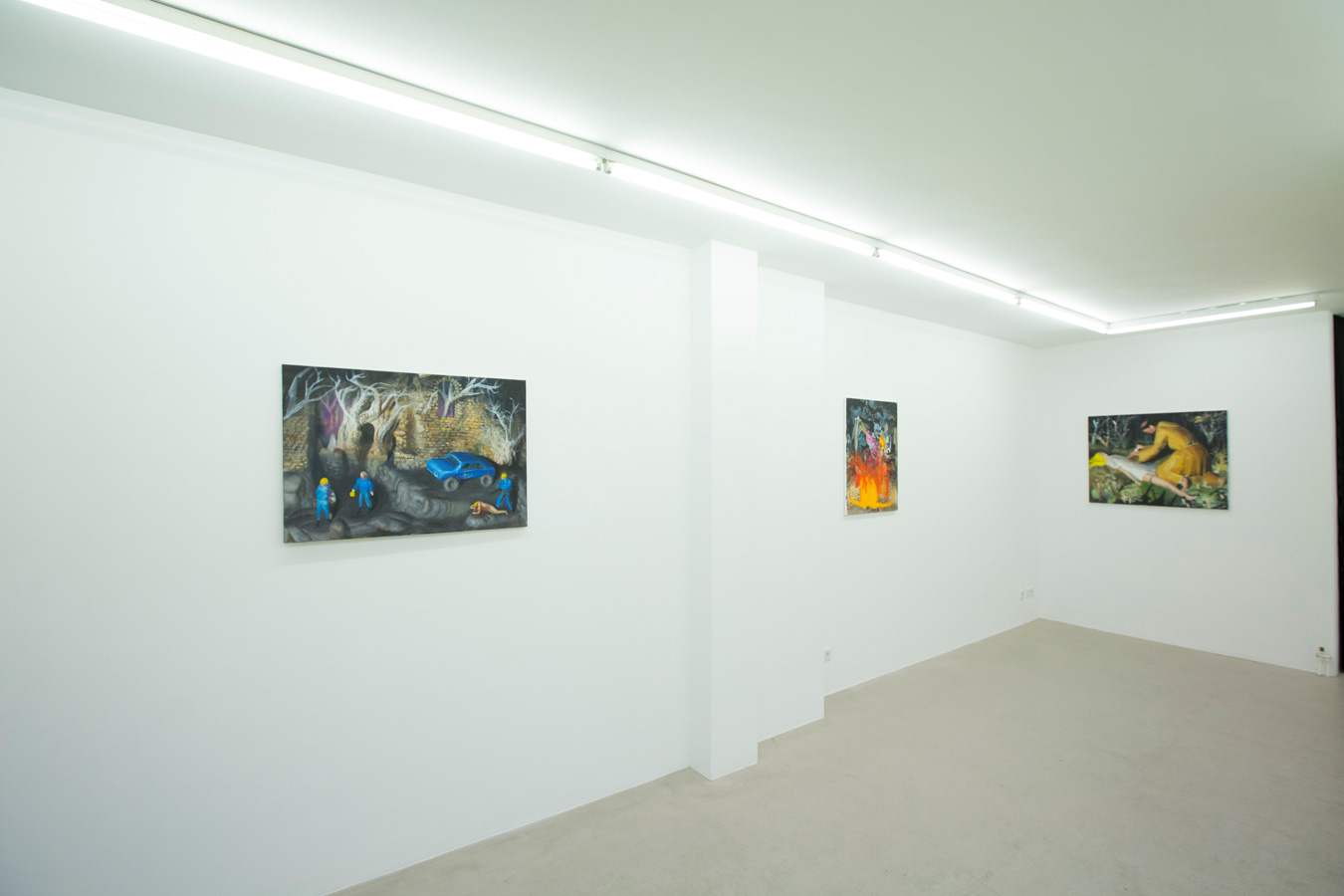 Ornis-A.-Gallery---exhibition-view-Julius-Hofmann---stony-fields-4